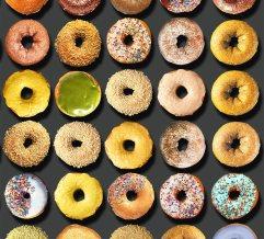 donuts-portraits-food