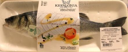 kefish-19-bass-full
