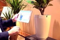 h2o-smart-pot-2