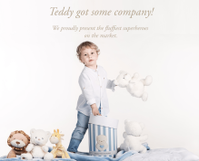 Teddy-landing-page-5