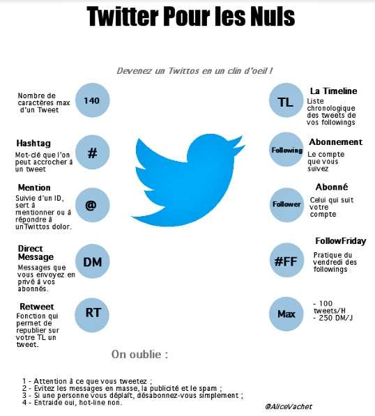 [Infographie] Twitter pour Les Nuls🔖