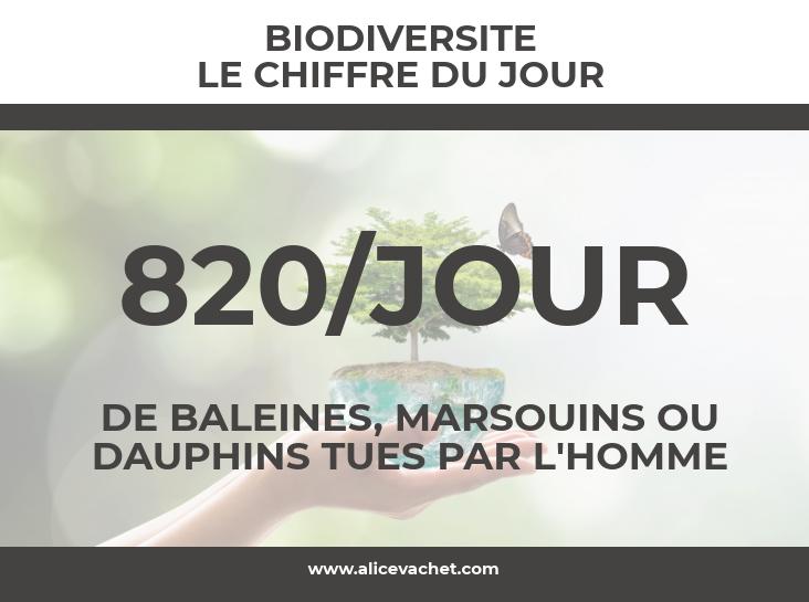 cdj-biodiversit_27621216