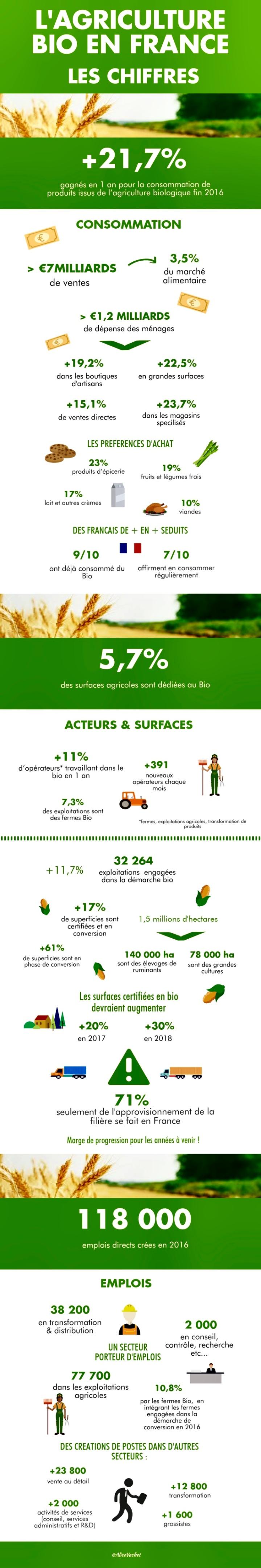 [Infographie] L'Agriculture Bio en France : Les Chiffres🌾