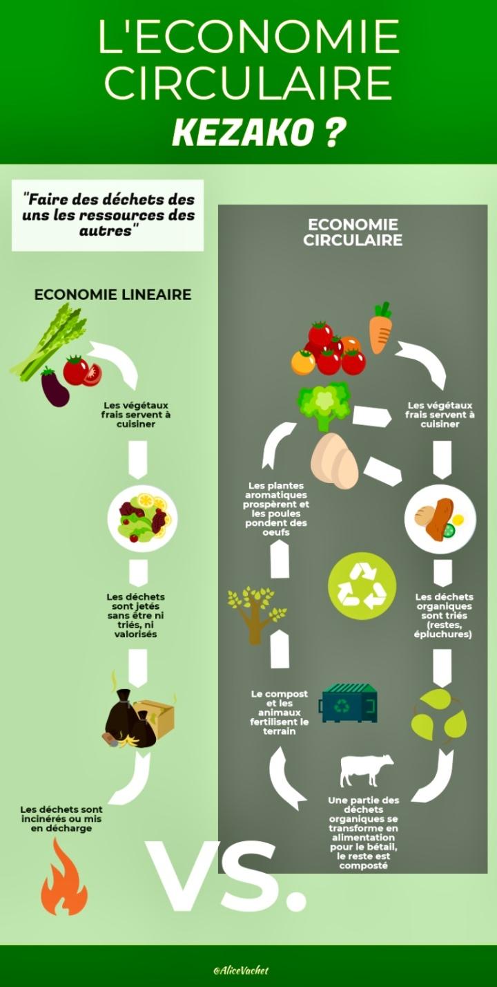 [Infographie] L'Economie Circulaire : Kezako ?♻️