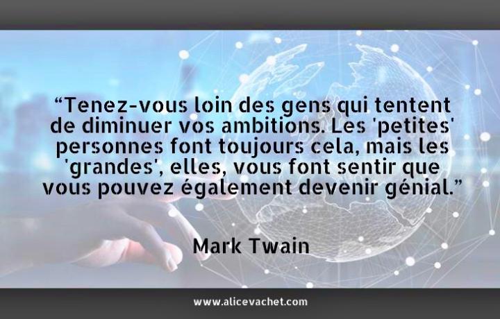 [Citation Entrepreneur]💡Mark Twain