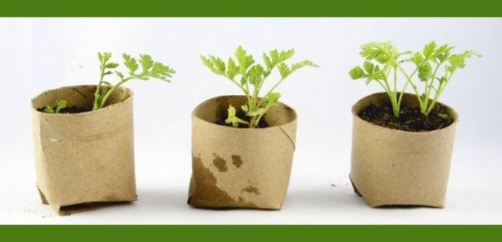 [Récup'] 10 idées de déco «insolite» pour le jardin (Partie 2)♻️